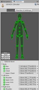 人体骨格Humanoid/Muscles & Settings